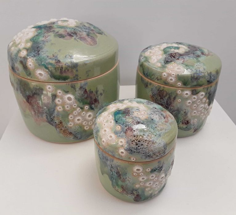 Barnacle Boxes